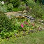 BNSS garden with pond